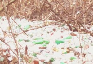 Вывоз мусора в Дедовске