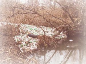 Вывоз мусора в Ступино