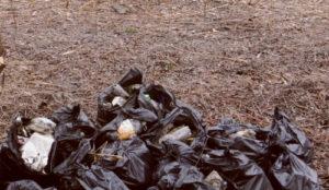 Вывоз мусора в Клину