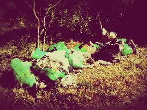Услуги по уборке мусора