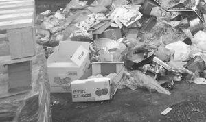 Вывоз мусора в Иваново