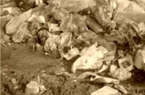 Вывоз отходов в Хотьково