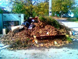 Отходы в Бутово