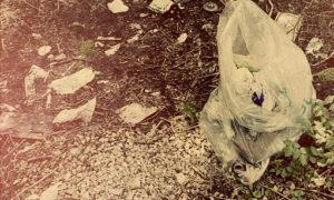 Отходы в Ельдигино