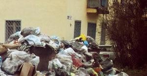 Отходы в Новокосино
