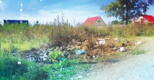 Отходы в Опалихе